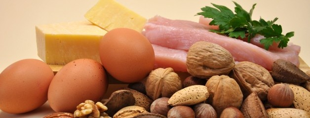 All_About_Protein