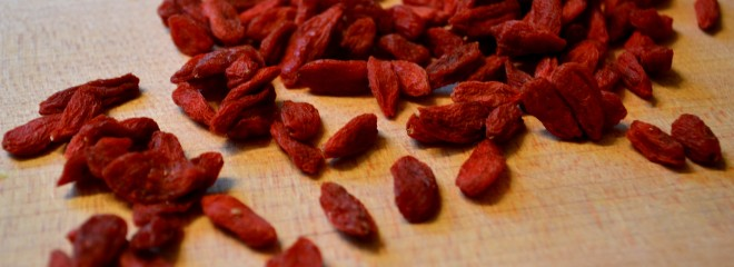All_About_The_Goji_Berry
