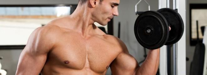 Arm Exercises For Beginning Bodybuilders