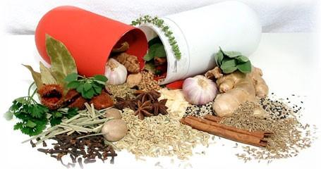 Award Winning Aromatic Plants