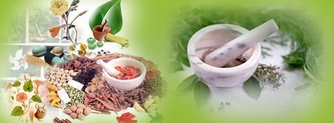 Ayurvedic_Medicine_System