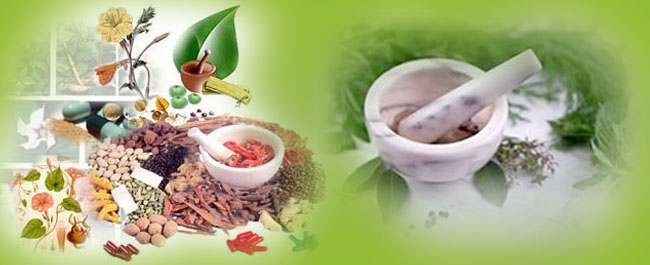 body 1 fitness ayurvedic medicine system