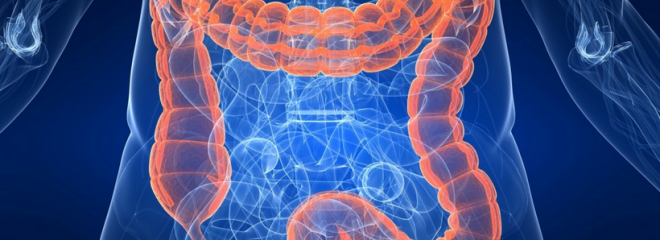 Colon-Cleanses-to-Lose-Weight-Do-They-Really-Work